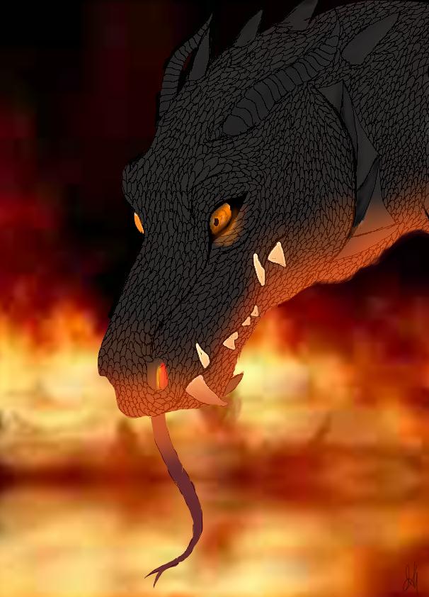 Much fire by CruelSycoInsanity