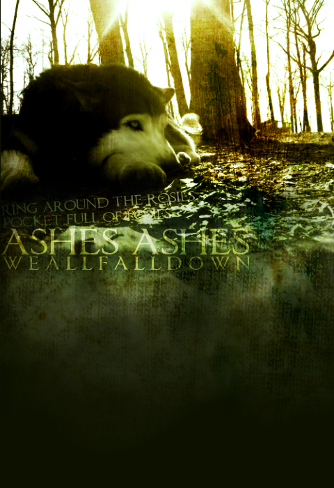 ^ Twilightstars ^ Wolves Wolf_Manip_by_betaluver