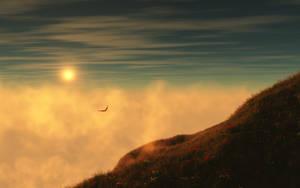 In Flight_wide by relhom