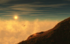 In Flight_2560