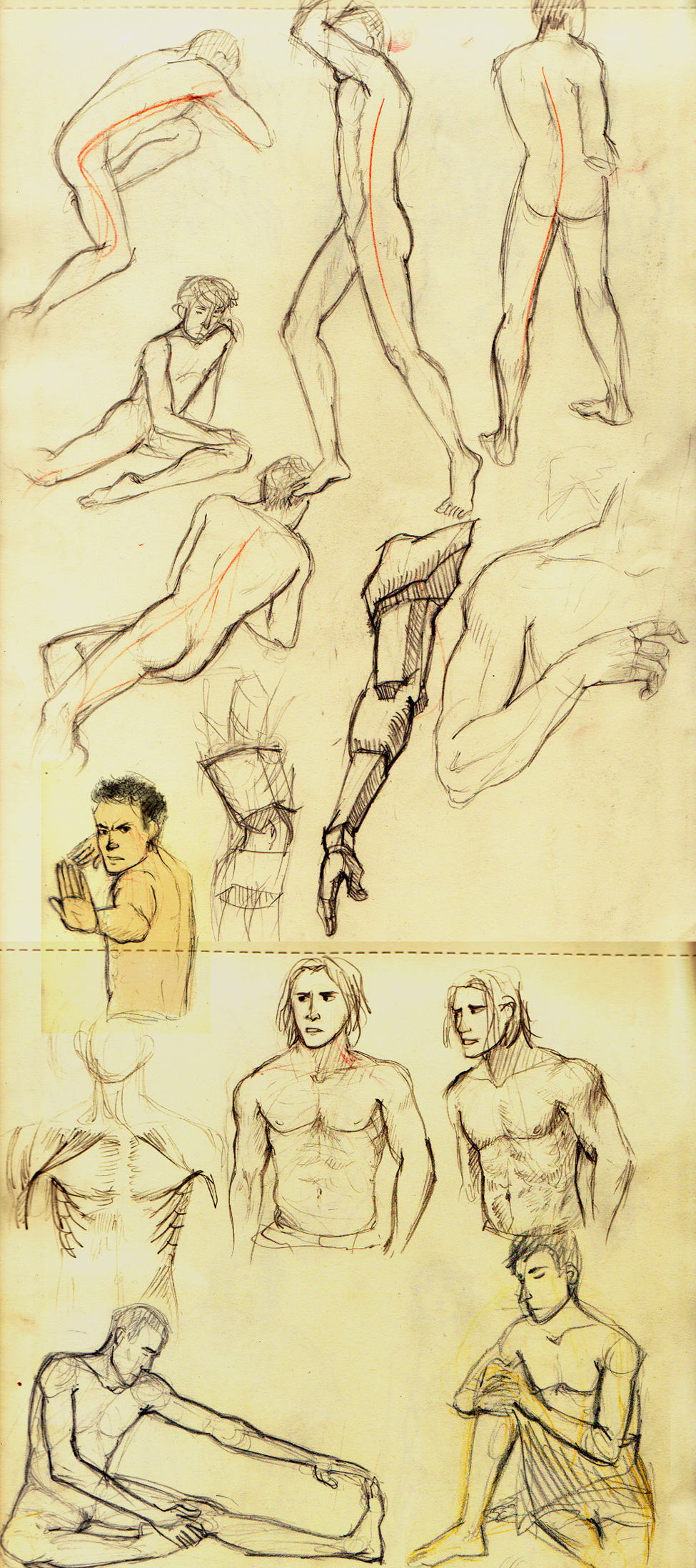 Nude male figure drawings by abibuu Nude art by ~Erika Gwendoline on deviantART