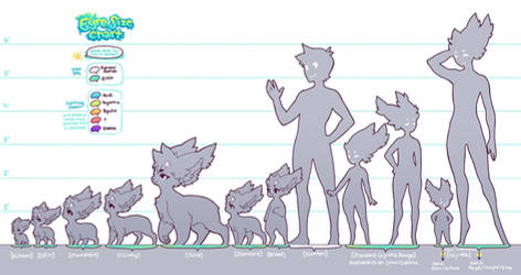 Species Guide : Eyre Size Chart