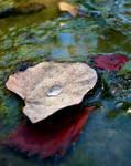 Drop In the Stream by phoenixsansfyr