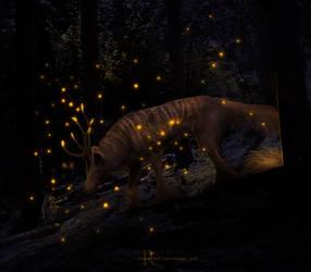 COM: fireflies by redemptari