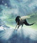 COM: the snow warrior