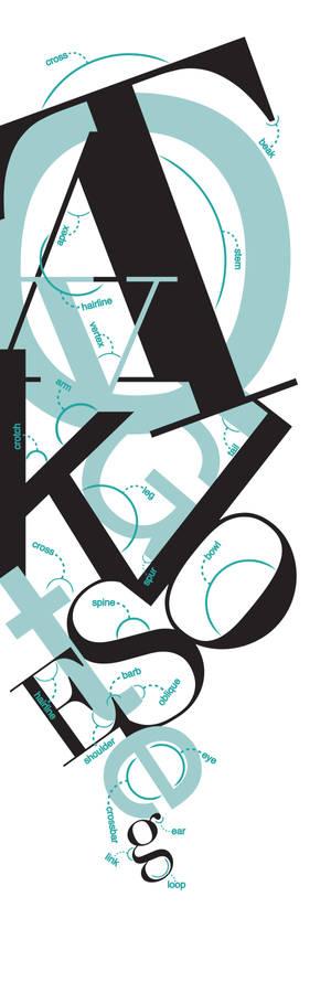 Letter Anatomy