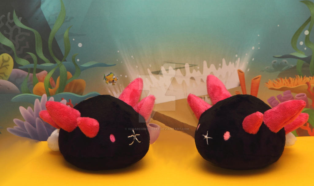 Handmade pyukumuku plushies by SugarcubeCherry