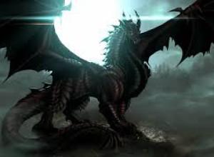 dragonzforever03's Profile Picture