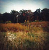 Landscape-stock 11 by AJK-Original-Stock
