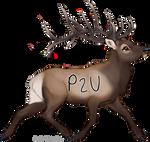 P2U Bull Elk
