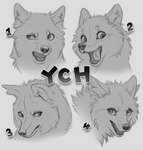 Headshot YCHs