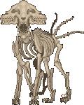 Dog anatomy. by cinnabutt