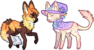 Witchpaws Minis