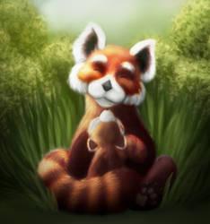 Red PandaFox by NuraRay
