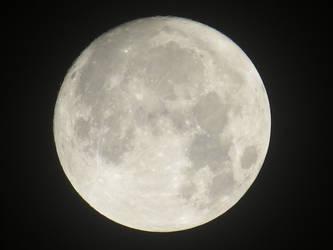 Super Moon night..