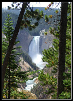 Upper Falls - Yellowstone