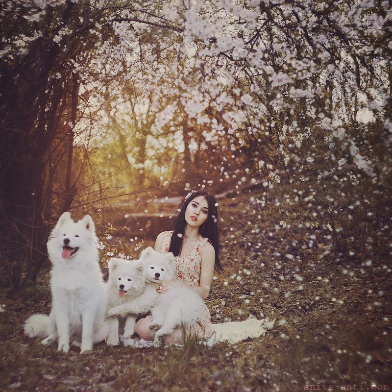 Flowerdog by AnitaAnti