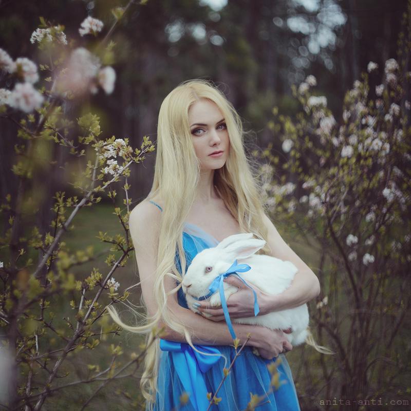 Wonderland by AnitaAnti