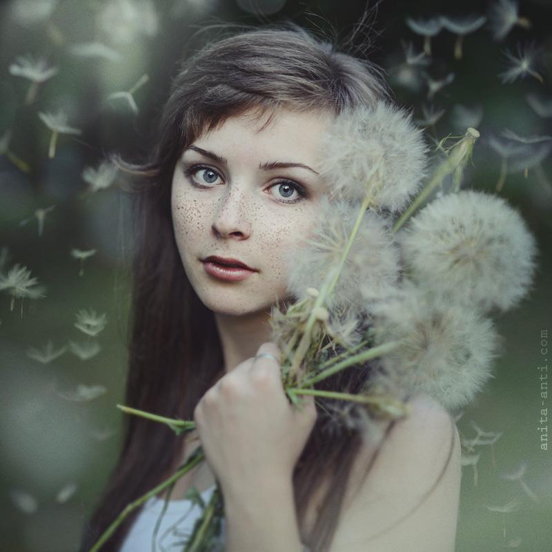 Dandelion by AnitaAnti