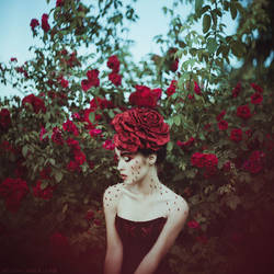 Roses n thorns