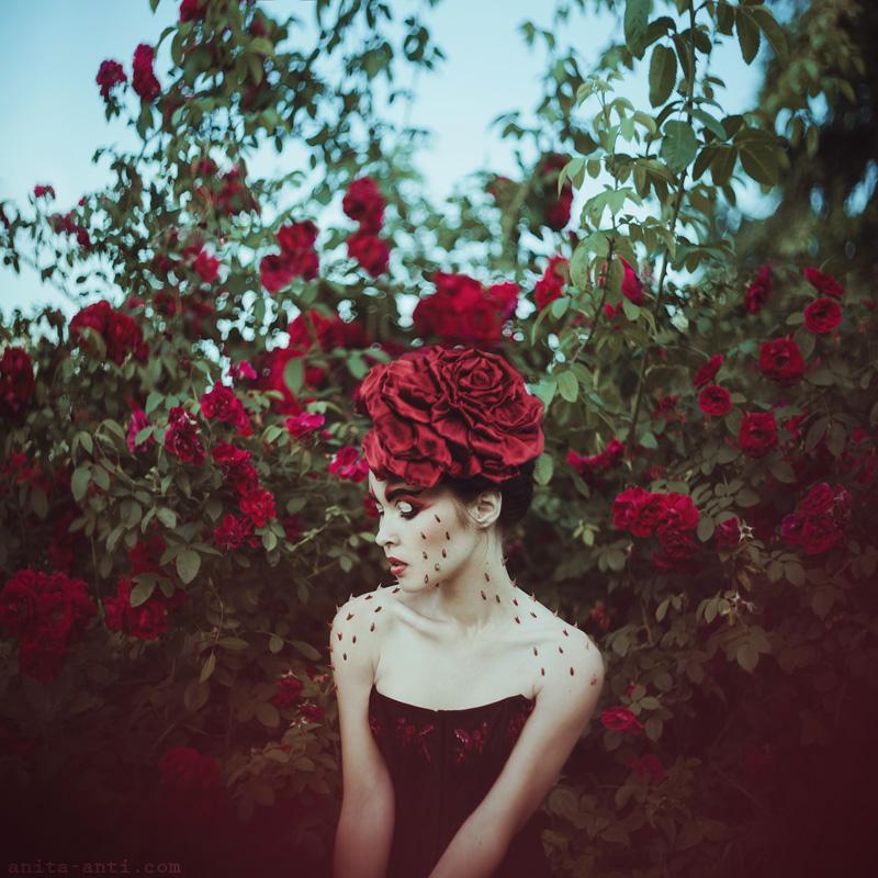 Roses n thorns by AnitaAnti