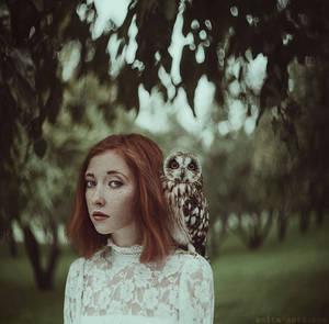 Owl by anyaanti