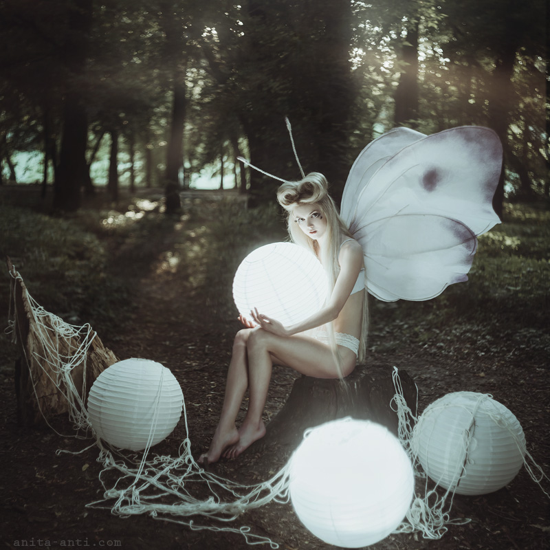 Moth by AnitaAnti