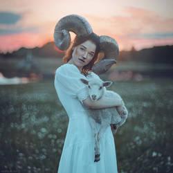 Lamb by anyaanti