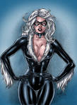 Marvels Black Cat