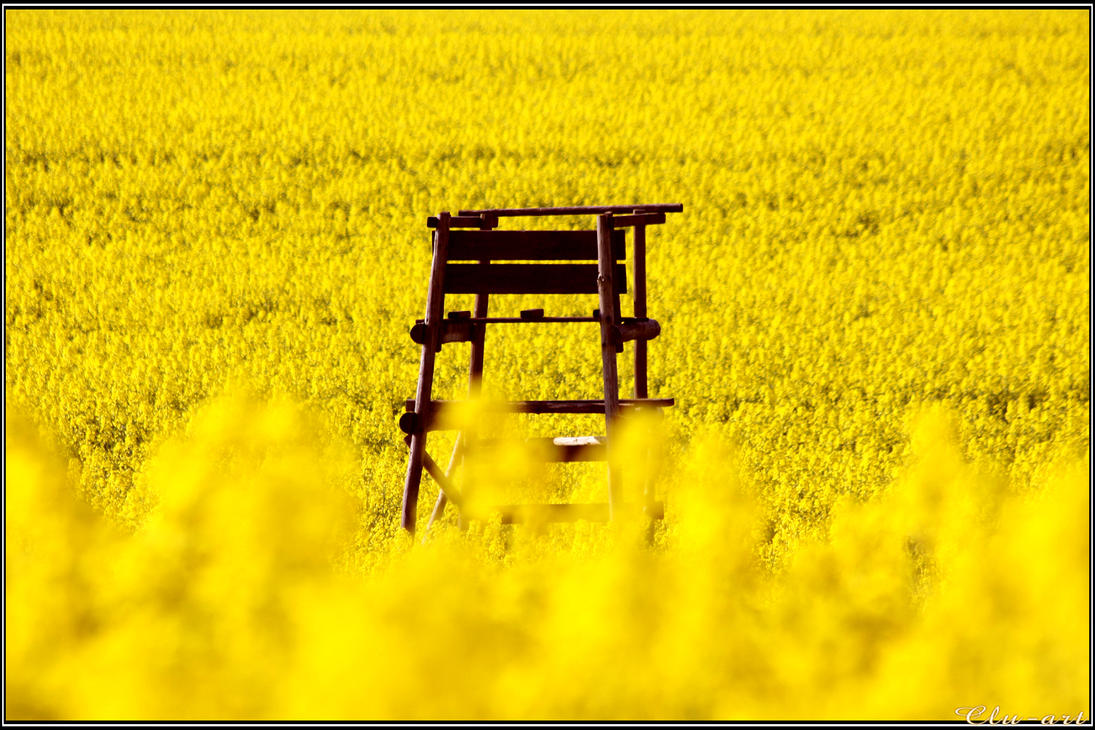Hunting Stand and Canola by Clu-art