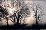 The Splendor of Haze