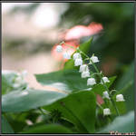 Spring Moments 13 by Clu-art