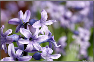 Spring Moments 24 by Clu-art