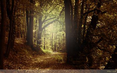 Autumn Path Wallpaper by Clu-art