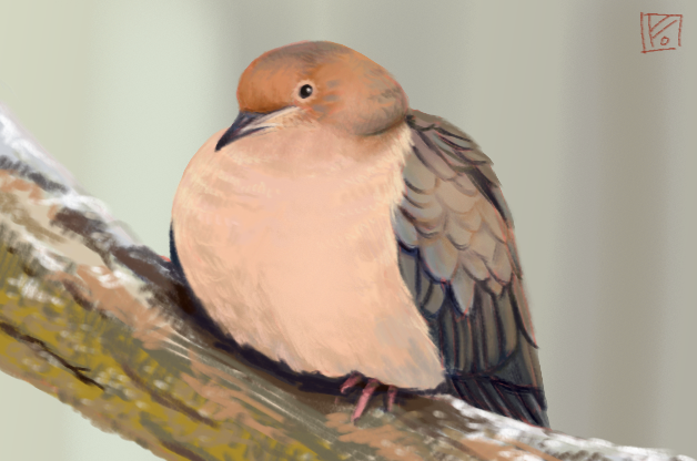 Mourning Dove by LittleGreyDragon