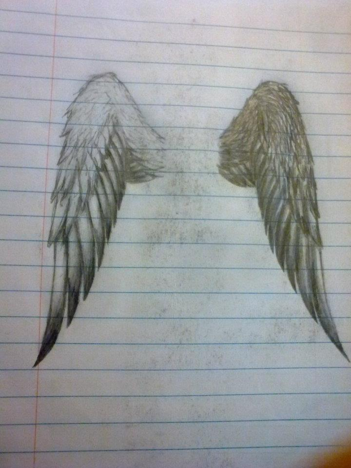 eagle wings by hiddenhunter1