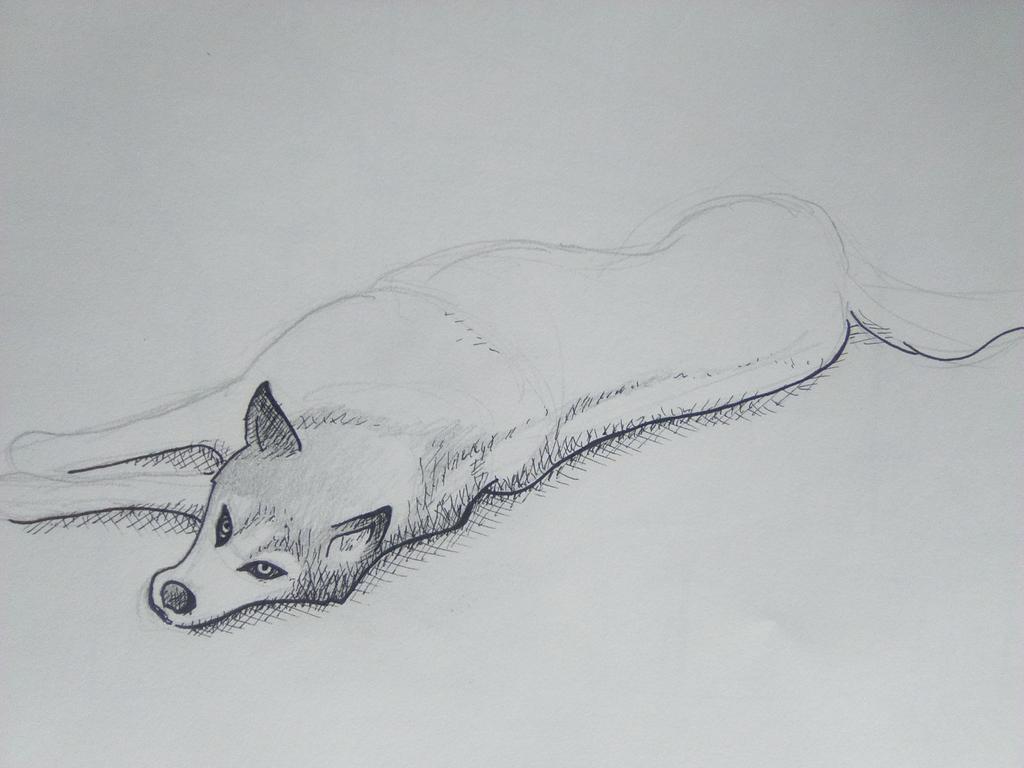 Dog sketch by MarcCaixas