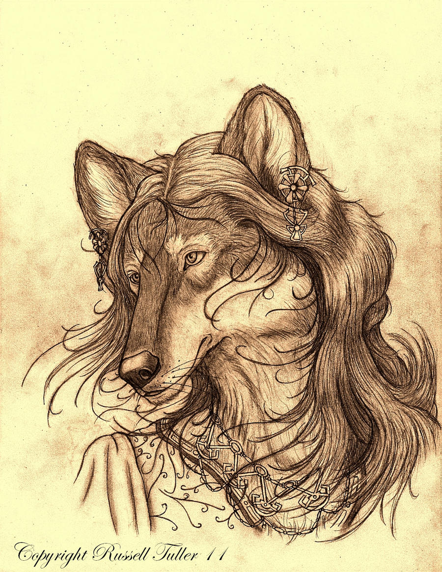 Wolf Anthro Warrior Female Wolf Anthro Portrait 6