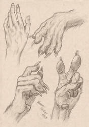 Anthropomorphic Wolf Hand Study