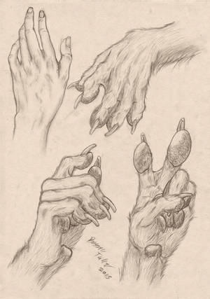 Anthropomorphic Wolf Hand Study
