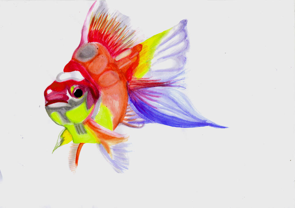 Watercolour fish take two xd by tammyyy on deviantart for Watercolor fish painting