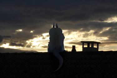 Sangerla on the roof by Anselmejk