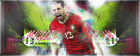 Miguel Veloso by HararyDP