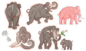 Elephants by PUNKBOX