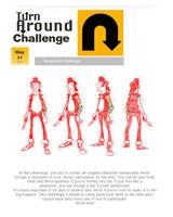 Turn Around Challenge by PUNKBOX