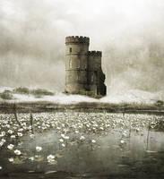 Castell Gwyn by Lwsypher