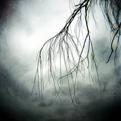 The Weeping by RAlexanderTrejo