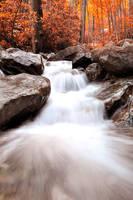 Falls In Autumn