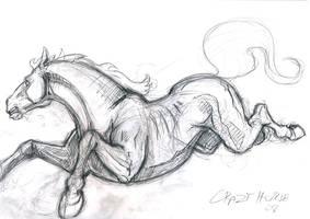 dodge by crazyhorse42