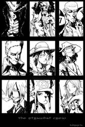 The Strawhat Crew